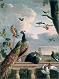 Cuadro de metacrilato 30 x 40 cm: Palace of Amsterdam with Exotic Birds de Melchior de Hondecoeter/Bridgeman Images