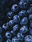 Notebook: Large Blank Lined Notebook With Blueberries. College Ruled. 120 Pages.8.5x11