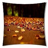 Lumimi Cotton Super Soft Short Cotton Decorative Throw Pillow Cover Cushion (1818)