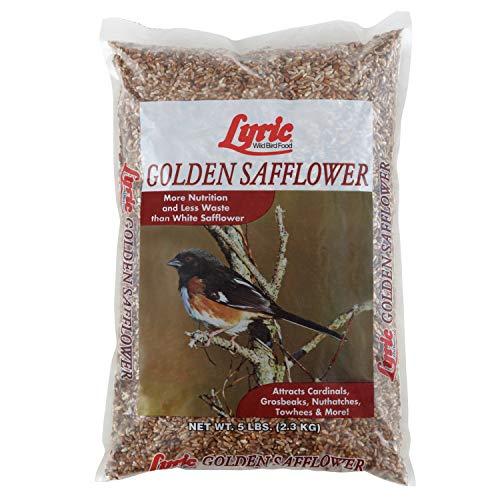 Lyric Golden cártamo semillas–5libras bolsa