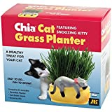 Chia Cat Grass Planter Snoozy Kitty