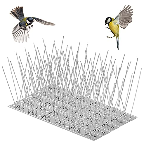 QIMEI-SHOP Pinchos Anti Pájaros Antipalomas de Acero Inoxidable 12 Hileras 25cm Cubre 300cm para Disuasión de Aves Gaviotas Gato