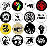 Black Panther Party 16 NEW 1 Inch (25mm) Set of 16 BLACK LIVES MATTER Buttons Badges Pins 1' BLM