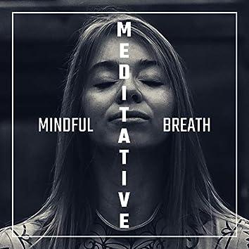 Mindful Meditative Breath: 2020 Soothing Music for Relaxation, Deep Meditation, Inner Harmony & Balance, Lounge, Peaceful Mind, Meditation Music Zone