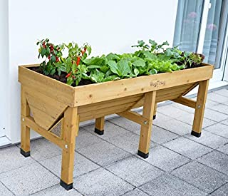 VegTrug Medium (1.8m) Raised Large Wooden Garden Planter Pot to Grow Vegetables Fruits and Herbs for Balcony Terrace Patio (Natural Colour)