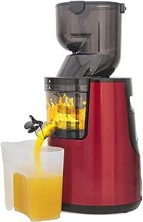 SXXYTCWL Juicer Machines, Machine multifonctionnelle Machine de Juce Crue Machine Juicer Commercial Ménage Médecin Machine...