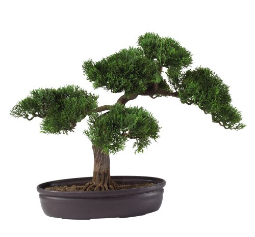 Nearly Natural 4106 16in. Cedar Bonsai Silk Plant,Green