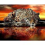 Kits de pintura de diamantes 5D para adultos 5D DIY leopardo Tigre bordado punto de cruz diamantes de imitación mosaico pintura 50x40cm
