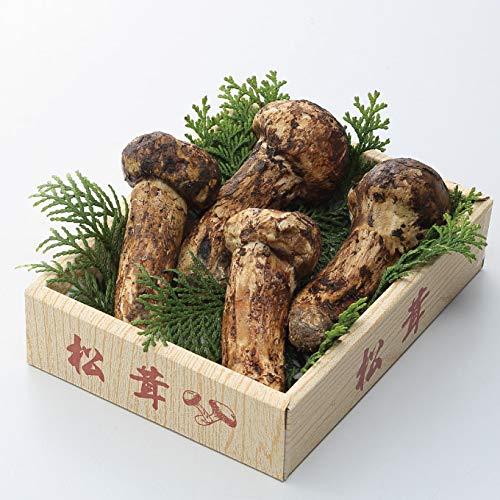 松茸 まつたけ 国産松茸 日本産 産地厳選 上物 つぼみ 大きさお任せ 約100g