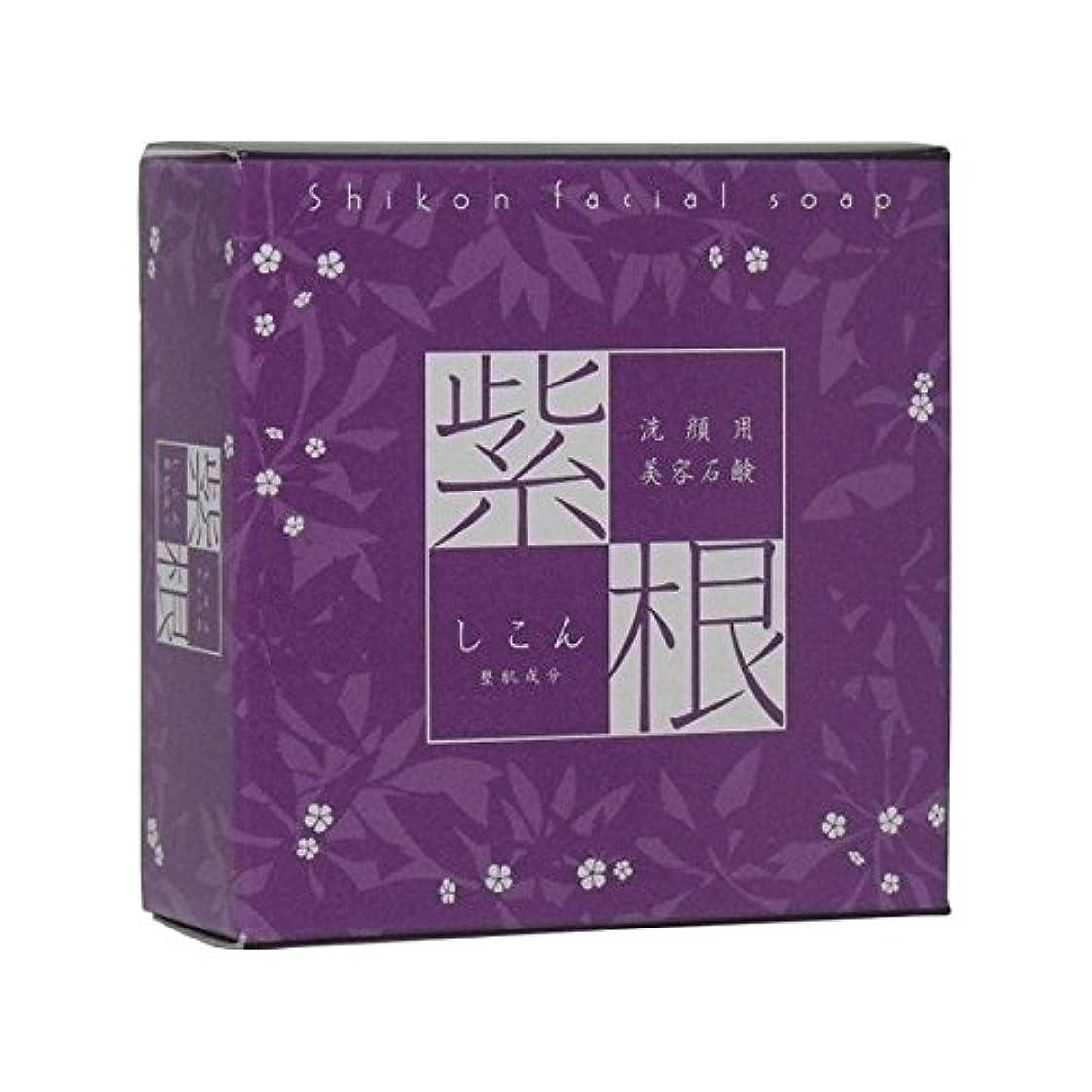 抽選統治可能休日に紫根石鹸110g(オリジナル泡立てネット付き)3個セット【魔女たちの22時で話題!】