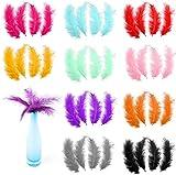 Greyoe Plumas Manualidades, Plumas Decorativas, 200 Piezas de Plumas de Color Natural DIY Artesanía Pluma 10-15 cm para Atrapasueños Boda Fiesta Sombrero Decoración Baby Shower Decoración