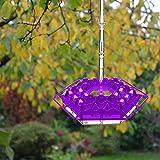 JKKJ Comedero para colibrí al aire libre, 12 oz colgante poligonal comedero de pájaros con colores brillantes y 30 puertos, decoración de jardín a prueba de fugas, foso de hormigas y abejas