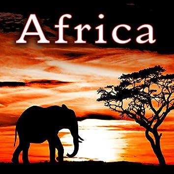 Africa Sound Effects