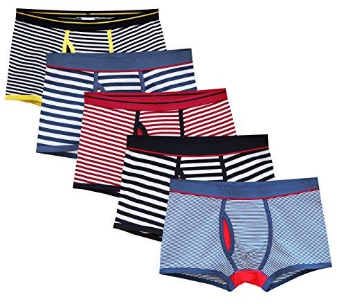CHUNG Men's X-Temp Cotton Boxer Brief Underwear Fashion Stripe Assorted Pack of 5, L