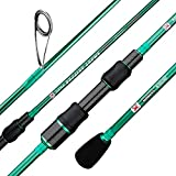 BERRYPRO Ultralight Spinning Fishing Rod, Travel Spinning Rod with Solid Carbon tip Fast Action, 2-8lbs, 1/32-1/8oz (6', 6'6'') (6'-Ultra Light-2pc)