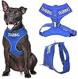 Arnés acolchado y resistente al agua para perro (perro en entrenamiento/no molesto), con código de color azul, no tire de la parte delantera y trasera, evita accidentes al advertir a otros de su perro por adelantado