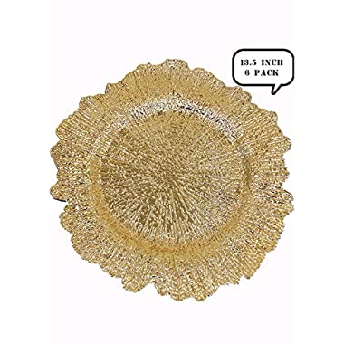USA Party Flower Elegant Plastic Reef Charger Plate, Set of 6 (13.5 inch)