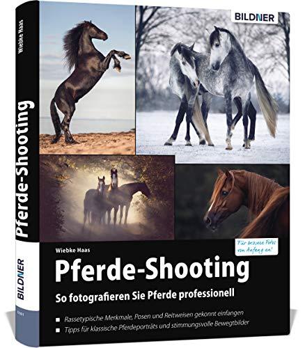 Pferde-Shooting: So fotografieren Sie Pferde professionell