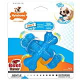 Nylabone Puppy Chew X Bone Chew Toy Beef Flavor Small/Regular - Up to 25 lbs.