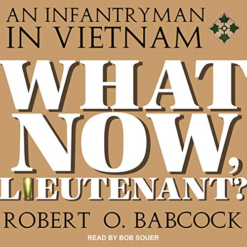 What Now, Lieutenant? audiobook cover art