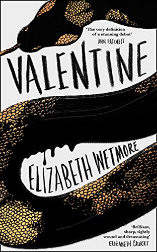 Valentine: A Stunning Debut and a New York Times Bestseller by [Elizabeth Wetmore]