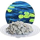 Schicker Mineral 25 kg Zeolith-Aqua Wasseraufbereiter, Filtermedium zur Nutzung im Gartenteich, Schwimmteich, Aquarium und Sandfitleranlage (8,0-16,0 mm)