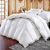 Medium Weight White Goose Down Comforter Warmth Duvet Insert,100% Cotton Cover,Soft Fluffy, White