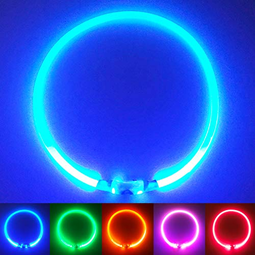 PetSol Collar de Seguridad LED Recargable Ultra Brillante para su Mascota (batería de Litio Recargable) Mayor Visibilidad y Seguridad Azul