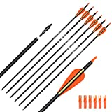 Hunter Ian Archery Carbon Arrow Hunting Arrows 26 Inch with 100 Grian Removable Tips for Compound Bow & Recurve Bow Practice Shooting (Pack of 6)