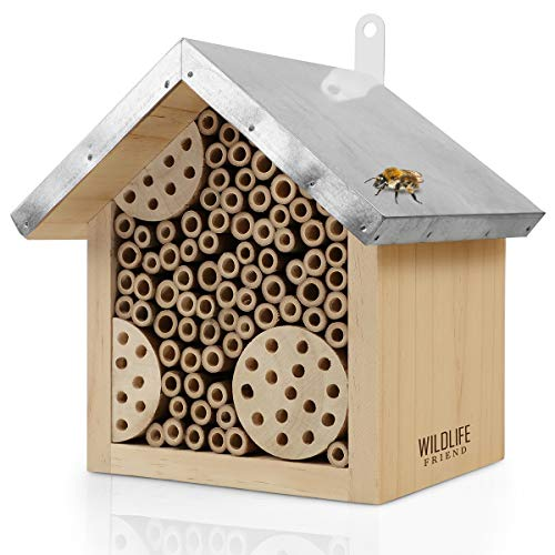 WILDLIFE FRIEND | Bienenhotel mit Metalldach, Wildbienen Insektenhotel - Fertig Montiert aus Kiefernholz & 100{74a099abf43d2d642ddfe41dc2bf2c388eaa8635f68e8a3dfb1056a5f660d12c} Wetterfest - Unbehandelt, Insektenhotel, Nisthilfe für Wildbienen