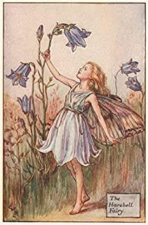 Harebell Fairy by Cicely Mary Barker. Summer Flower Fairies - c1935 - old print - antique print - vintage print - Flower Fairies art prints
