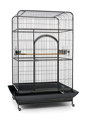 Prevue XL Parrot Cage Review 2021 2