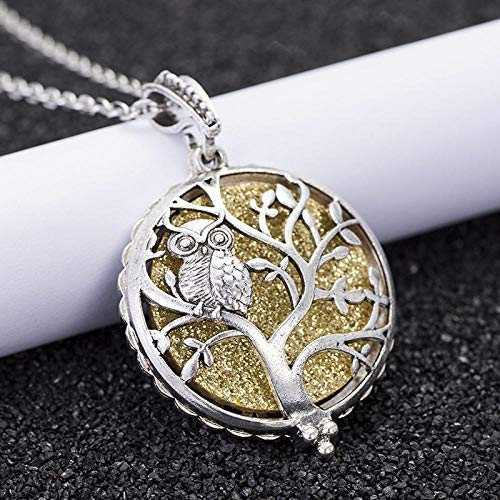 Aromatherapie AnhängerHalskette Aroma Diffuser jewelry Necklace Open Lockets butterfly Pendant Perfume Essential oil LocketNecklace Chain length 60cm HS06