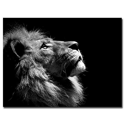 baodanla Rahmenloses Ölgemälde Moderner schwarzer Löwe Leinwand Posterdruck Lo Tiermalerei Druck60x90cm
