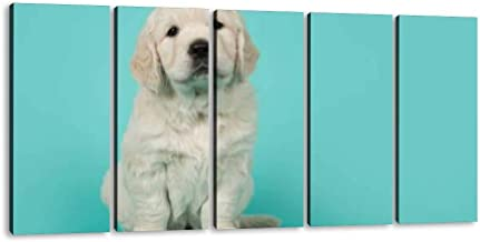 SIIKEI Cute Golden Retriever Puppy Looking at The Camera Sitting on a 5 Panel Wall Art Canvas for Home Decor Paintings Contemporary Artwork Framed Ready to Hang Posters and Prints (60''Wx32''H)
