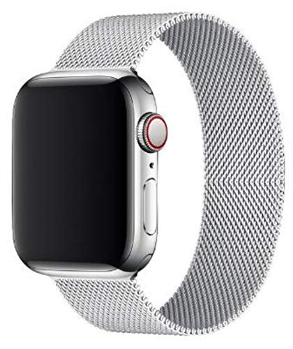 Compatible for Apple Watch Band ,Stainless Steel Magnetic Absorption Strap Metal Mesh Wristband Sport Loop for Aple Watch 38 mm 40mm 42 mm 44mm Series 6/SE/5/4/3/2/1 (Silver,38MM/40MM)