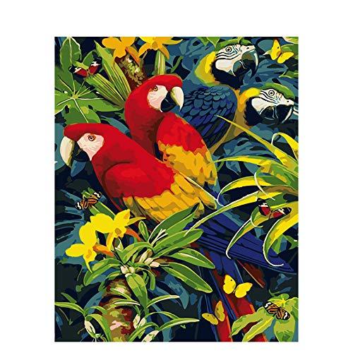 Pintura al óleo digital diy Loro verde tropical Pintar por números para niños Adultos Kit de Pintura al óleo DIY Principiante 40X50cm Without Frame