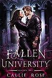 Fallen University: Complete Series (Books 1-3): A Reverse Harem Romance