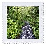 3dRose Bridal Veil Creek, Columbia River Gorge, Mt. Hood National. - Quilt Squares (qs_332036_9)