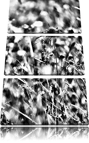 Kleurrijke grassen, planten, natuurFoto Canvas 3 deel | Maat: 120x80 cm | Wanddecoraties | Kunstdruk | Volledig gemonteerd