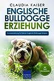 Englische Bulldogge Erziehung: Hundeerziehung für Deinen Englische Bulldogge Welpen