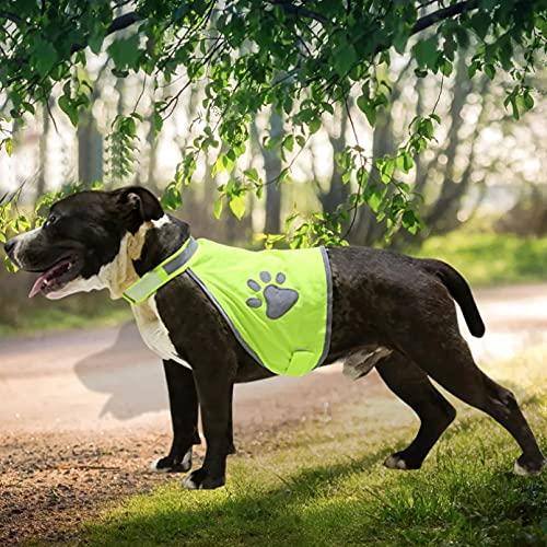 MDKAZ Ropa para Mascotas Chaleco Seguridad para Perros Ropa Alta Visibilidad para Perros pequeños y medianos Caminar al Aire Libre en la Noche Mascota Regalo para Mascotas-XL