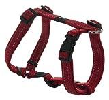 Rogz Utility Medium 5/20,3cm Riflettente Serpente Regolabile Dog h-Harness