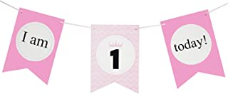 Brcohco I'm 1 Today Cute High Chair Banner 1st Birthday for Baby First Birthday Party Decoration Supplies(Pink)
