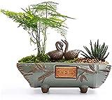 Macetas Macetas para jardín al aire libre, Macetas Macetero para bonsai Macetas para horno de plantas verdes Cerámica creativa Estilo chino Grande Wen Bambú Carnoso Púrpura Arena Maceta de piedra