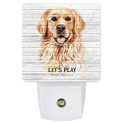 Plug-in Night Lights Let's Play Golden Retriever Dog Animal Wood Grain Pattern LED Night Lamp with Auto Dusk-to-Dawn Sensor Warm White Light& Ultra Low Power for Bedroom/Bathroom/Hallway/Kid's Room