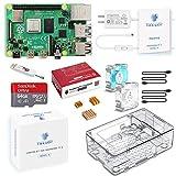 TRASKIT Raspberry Pi 4 Model B Starter Kit/ラズベリーパイ4B(4GB RAM)技適マーク付/MicroSDHCカード64GB NOOBSプリインストール/簡単に取り付けるケース/5.1V/3A Type-C スイッチ付電源/2つのMicroHDMI-to-HDMIケーブルライン/3つヒートシンクと2つの透明冷却ファン/カードリーダ /GPIOリファレンスカード/日本語取扱説明書/2年保証付