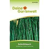 Schnittlauch Samen (Middleman)   Schnittlauchsamen   Saatgut für Schnittlauch-Pflanzen   Kräutersamen