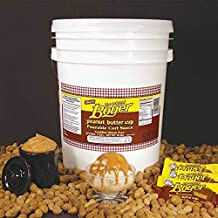 product image for Peanut Butter Curl Sauce, 5 Gallon, 45 Pound -- 1 each.