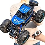 ZZZHS Los juguetes for niños RC Cars 1: 10 Scale Off Road Vehicles Monster Truck 材质 Drift Race Terreno coches, 6wd Camiones de juguetes impermeable Rc Coche de control remoto a la deriva for niños Niñ